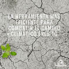 La herramienta MÁS EFICIENTE para combatir el cambio climático eres tú.