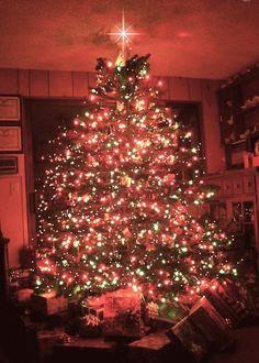 Very beautiful Christmas gif Christmas Tree Gif, Beautiful Christmas Trees, Christmas Scenes, Christmas Mood, Christmas Pictures, Christmas Greetings, Christmas Lights, Merry Christmas, Xmas