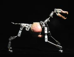 Ooooooook, WHO brought the terror dog???