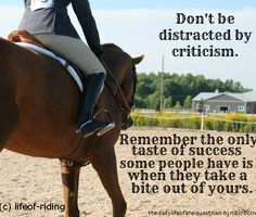 Don't be distracted by criticism. Remember the only taste of success some people have is when they take a bite out of yours.