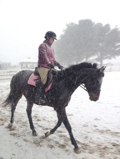 Jezebel on her first snow training ride with her trainer. She had a blast in the snow!