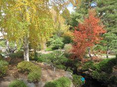 Gardening:Denver Botanical Gardens Sunny Botanical Gardens Design Tricks Real Estate Gardening Decor Home Exterior Decoration House Garden Ideas 8 Design Tricks From Sunny Botanical Gardens