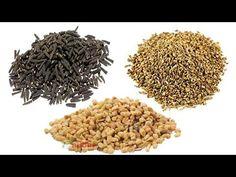 How To Dry Basil, Herbs, Health, Youtube, Food, Life, Health Care, Essen, Herb