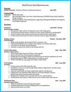 Business Systems Analyst Resume Template Nice Best Secrets About Creating Effective Business Systems