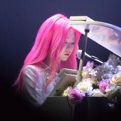 Japanese Girl Group, Kim Min, Pink Hair, One Pic, Kpop Girls, Yuri, Rapper, Idol, Honda