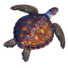 Loggerhead or Sea Turtle, we have almost 100 different turtles to choose from. Turtle swimming pool mosaics look fantastic in almost every pool and are available with and without shadow. Swimming Pool Mosaics, Swimming Pools, Glass Pool Tile, Pool Tiles, Mosaic Glass, Sea Turtle Art, Sea Turtles, Turtle Outline, Loggerhead Turtle