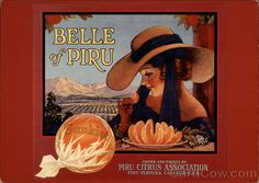 Belle of Piru, Orange Crate Label (On front) Grown and packed by Piru Citrus Association; Piru Ventura Co., Calif. U.S.A