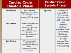Hemodynamics Basic Concepts