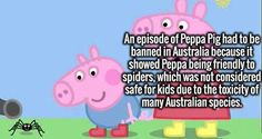 "Peppa Pig says, ""Let's play with the Sydney Funnel Web Spider kids, it'll be fun. Peppa Pig Funny, Peppa Pig Memes, Sydney Funnel Web Spider, Spider Meme, Funny Moments, Funny Things, Random Things, Funny Stuff, Clean Memes"