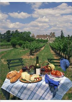 Hahnemuhle PHOTO RAG Fine Art Paper (other products available) - Table set with a picnic lunch in a vineyard in Aquitaine, France, Europe - Image supplied by WorldInPrint - Fine Art Print on Paper made in the UK Nature Aesthetic, Summer Aesthetic, Travel Aesthetic, Aesthetic Food, Aesthetic Outfit, Aesthetic Vintage, Aesthetic Girl, Aesthetic Bedroom, Camping Aesthetic