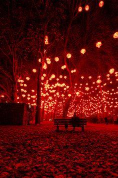 Lantern Festival, Lyon, France
