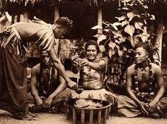kava Samoa - Recherche Google