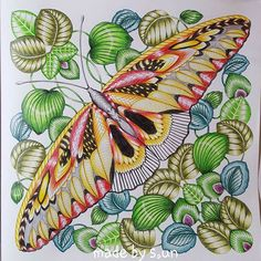 Finally My Little Butterfly From Milliemarotta Curiouscreatures Coloringbook Fantastischenatur Coloringbookforadults