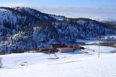 Rindalsskogen Negarn