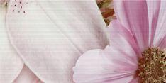 """Аромат"" - Вставка декоративная 500х250 Napkins, Tableware, Dinnerware, Towels, Dishes, Napkin"
