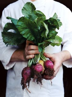 blackberry farm radishes  |  farm to table