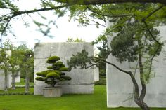 Tree Museum / Enea Garden Design / on TTL Design