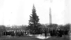 Cooldige's First National Christmas Tree... Happy Holidays from LaFerney Commercial Roofing