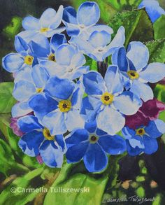 Watercolor Works: Forget Me Nots. Blue Flowers, bold Color, Realistic watercolor  blue flowers, forget me knots, watercolor flowers