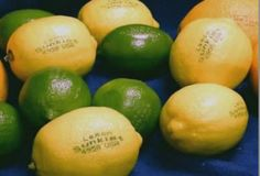 Low-Energy Laser Etching Could Replace Annoying Fruit Labels Different Kinds Of Fruits, Variety Of Fruits, Fruit Salad Tree, Laser Etcher, Summit Learning, Laser Art, Yes I Can, Laser Engraving, New Technology