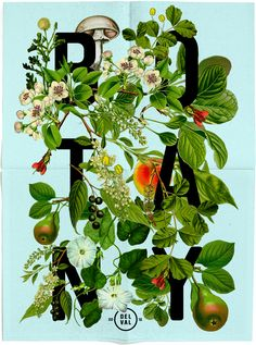 dan blackman, botany poster, collage from old Botany Illustrations found at the Philadelphia Museum of Science.