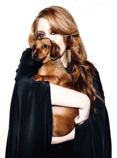 Adele with her dachshund Louie, named for the legendary Louis Armstrong. of course best people own a dachshund. JFK and adele you cannot beat it Louis Armstrong, Dachshund Love, Daschund, Dachshund Puppies, Adele New Album, Adele Love, Adele 25, Celebrity Dogs, Adele Photos