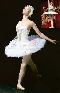 white swan tutu with silver and iridescent edged embellished wings