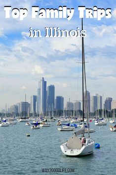Travel tips like these Family Trips in Illinois are perfect for your summer vacation planning! Grab some tips from experienced travelers in the state! Visit Chicago, Chicago Travel, Chicago City, Chicago Illinois, Chicago Bears, Chicago Chicago, Illinois State, Chicago Style, Barack Obama