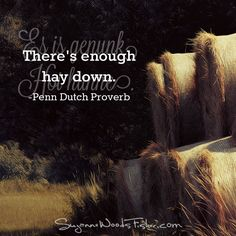 Proverb: Es is genunk Hoi hunne.  Translation: There's enough hay down.  What it really means: You've said enough.