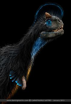 Damir Martin Carnotaurus Sastrei