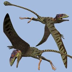 Petinosaurus. Petinosaurus wings were formed by membranes of skin and other soft tissues, but there were no feathers on them. These types of flying dinosaurs are smaller in size than Pterodactyl, although they shared a similar diet. They are believed to have lived in trees.