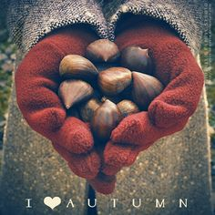 I love autumn...
