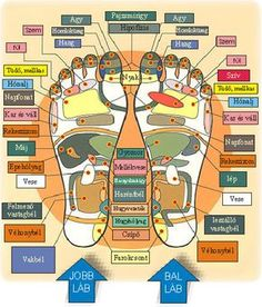 CHART - Massage points to stimulate body organs etc. Reflexology Points, Reflexology Massage, Foot Massage, Lymph Massage, Acupressure, Acupuncture, Lunge, Massage Benefits, Health Benefits
