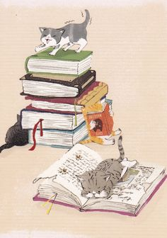 children's book, cat reading