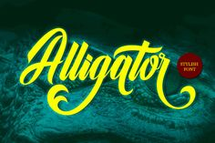 Alligator (Font) by Musafir LAB · Creative Fabrica Alligator is a versatile script font which includ Cursive Fonts, Handwriting Fonts, Calligraphy Fonts, Modern Calligraphy, Typography Fonts, Hand Lettering, Vintage Fonts, Vintage Typography, Graphic Design Typography