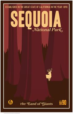 Sequoia print for gallery wall