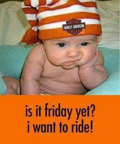 Laura Jayson Harley-Davidson #motorcycles #babies