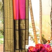 DELICATE KANCHIVARAM IKKAT SILK WITH PEACH, PINK AND MAGENTA HORIZONTAL STRIPES. THE INTRICATELY WOVEN BLACK AND GOLD PALLU IS THE PERFECT OFFSET