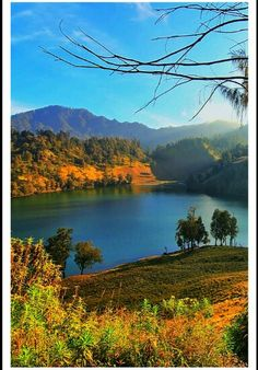 Indonesia East Java (Privacy and protected my Panoramio picture) one of the most beautiful view in East Java Ranu Kumbolo Lake seen from hill Date taken 07/27/14, 4:04 PM Click on the image to see the location by, 蒂芙尼 林 #Indonesia #beautifulJava #EastJava #Photography #cityoftourism #beautifulplace #Tengger #mountains #Lake #RanuKumboloLake #Hiking #tracking #adventure Ranu Kumbolo lake, located at an altitude of 2,500 meters above sea level, as well as a resting place for hikers and…