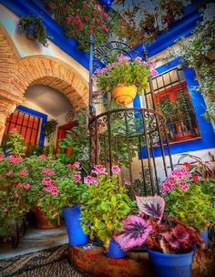 Courtyard, Cordoba, Spain.... - Pixdaus   {Is that a well under the circular ironwork -- there is a rope tied to the left side of it.     I LOVE the stone mosaic pavement.  I've seen the technique before, but love it in this setting.}