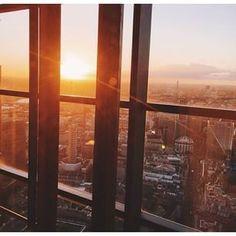 BEMUSCULAR Windows, Window, Ramen