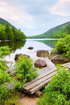 There are 4 campgrounds in Acadia National Park. Campers rate: best for RV camping, tent campsites, closest to the ocean, quietest, best for hiking. 5th Wheel Travel Trailers, Camping In Illinois, Private Campgrounds, Acadia National Park Camping, America And Canada, North America, Mount Desert Island, Whale Watching Tours, Kayak Adventures