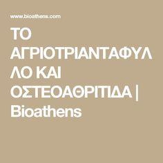 ΤΟ ΑΓΡΙΟΤΡΙΑΝΤΑΦΥΛΛΟ ΚΑΙ ΟΣΤΕΟΑΘΡΙΤΙΔΑ | Bioathens Kai, Herbs, Athens, Herb, Spice