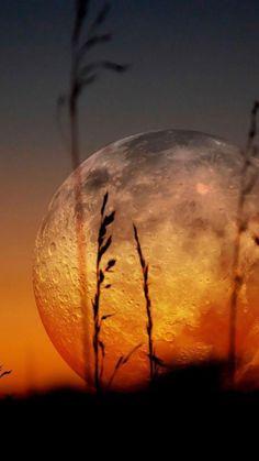 la pleine lune, photographie de la lune