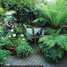 small garden ideas 43 Amazing Small Secret Garden Design Ideas Make Gardening Your Next Hobby Articl Back Gardens, Small Gardens, Outdoor Gardens, Small Garden Spaces, Small Spaces, Small Tropical Gardens, Tropical Patio, Tropical Garden Design, Small Courtyard Gardens