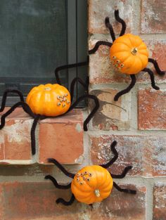Pipe Cleaners + Beans = Spider Pumpkins --> http://www.hgtvgardens.com/decorating/pumpkin-decorating-ideas-no-carve-options?s=4&?soc=pinterest