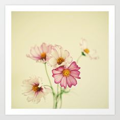 Buy Summer Flowers by Cassia Beck as a high quality Art Print. Worldwide shipping available at Society6.com. Just one of millions of products available.
