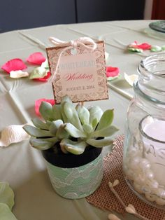 Love this sweet succulent favor one of our customers made for their wedding! TheSucculentSource
