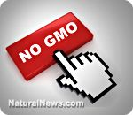 """""""Genetic Roulette"""" documentary shatters the myth of GMO safety---watch free for a few days  9-21-12"""