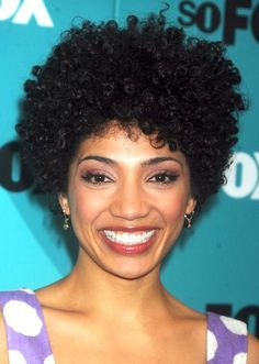 afro natural hairstyles  | ... Haircuts: Black short African American Hairstyles Pictures Winter 2013